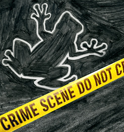 chalk outline of frog and police tape