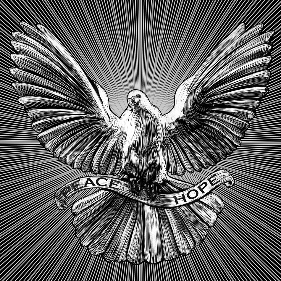 black and white of flying peace dove for greeting card