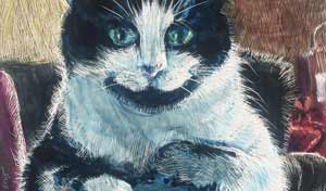 color scratchboard and inks of Jasmine the cat sitting on a man's knee.